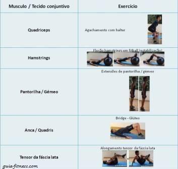 exercicios para o joelho
