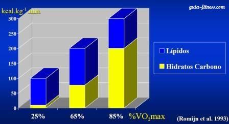 sistemas energeticos-oxidaçao lipidos-intensidade treino
