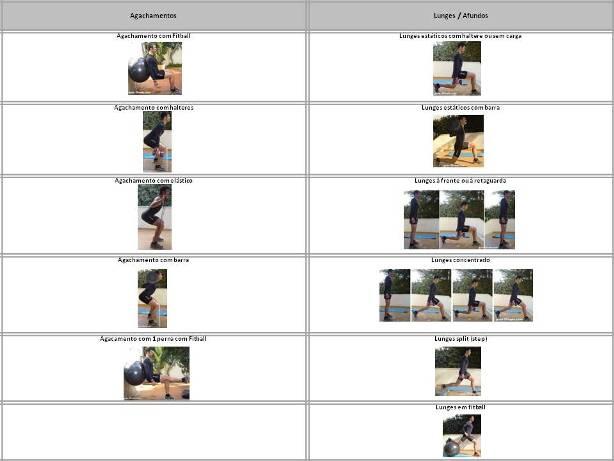 Organizar treinos-exercicios-treino força-exercicios perna