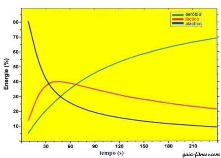 sistemas energeticos-intensidade exercicio-intensidade treino-vo2 max