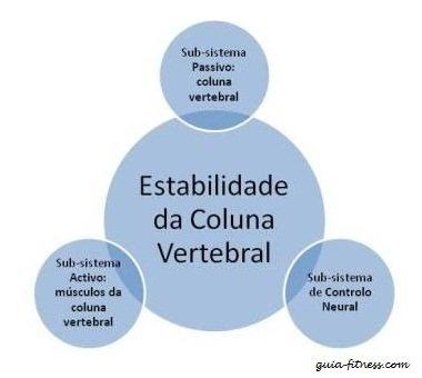 treino core integral-coluna vertebral-core-anatomia