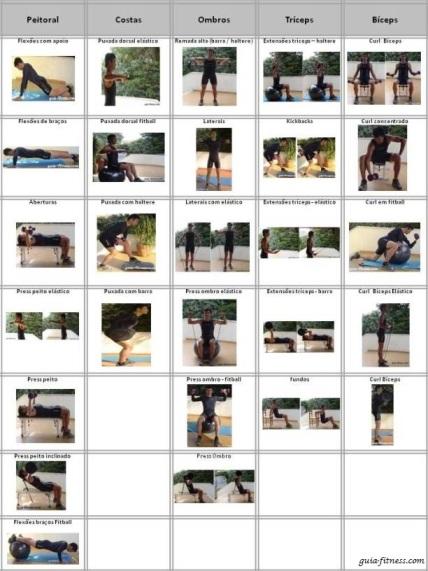 Organizar treinos-exercicios-treino força-exercícios tronco