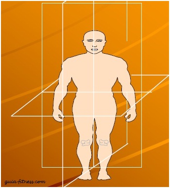 treino core integral-planos corporais-core